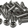 Special Purchase…Pickguard Screws
